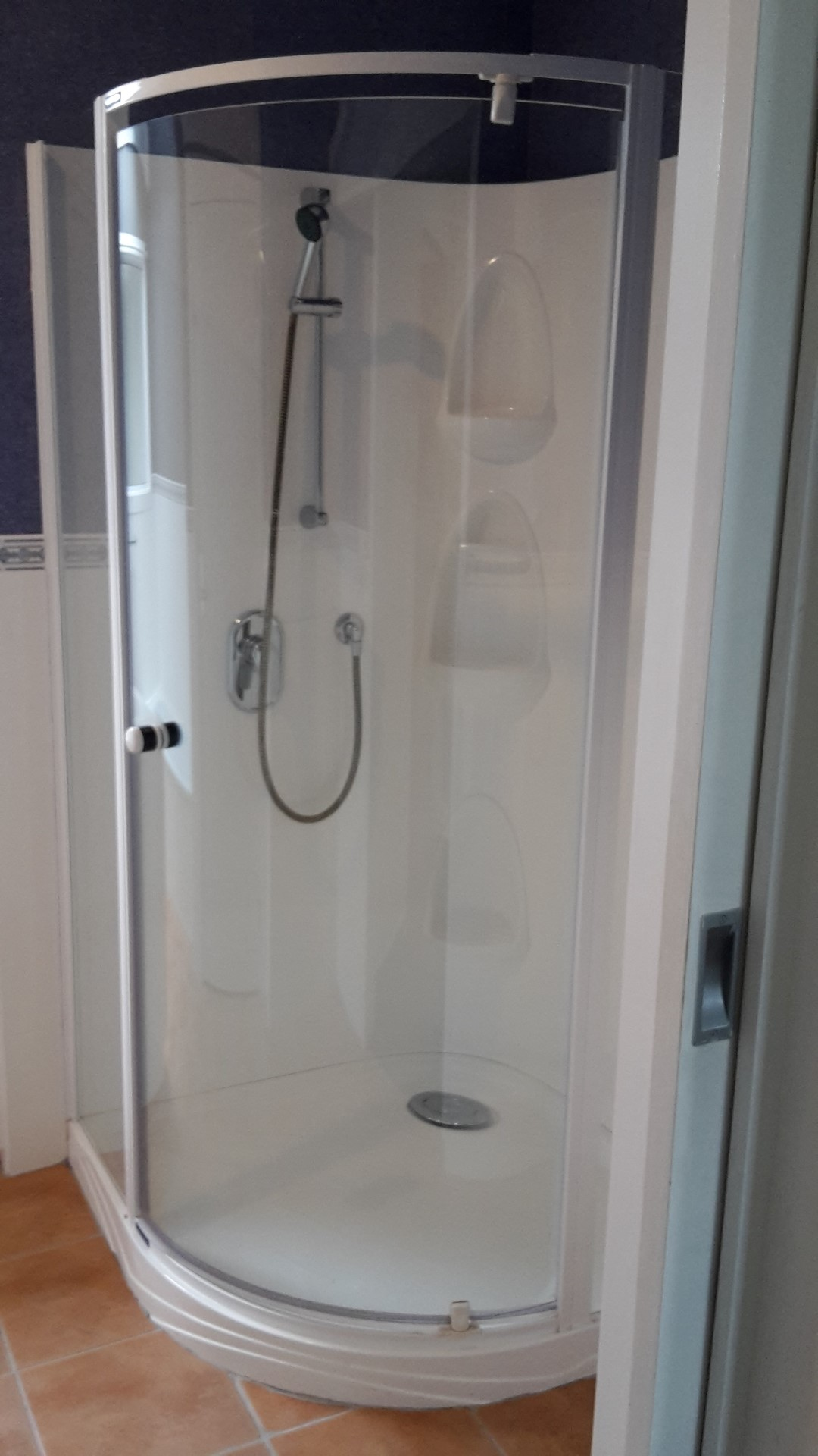 Shower Cleaning