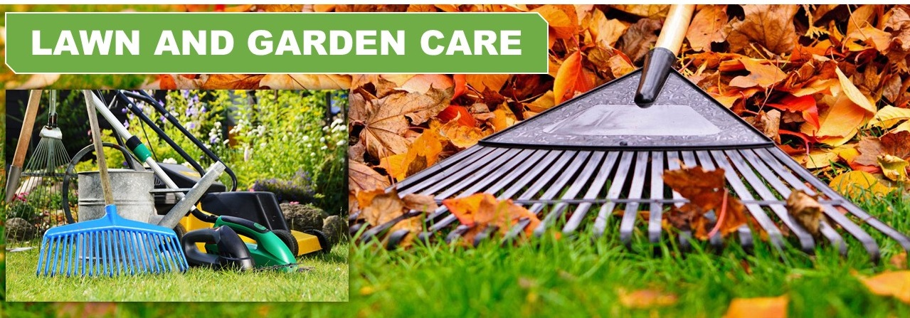 Lawn and Garden Care Service in Palmerston North